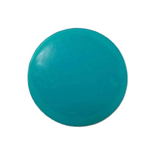 Oasis Plus Disc